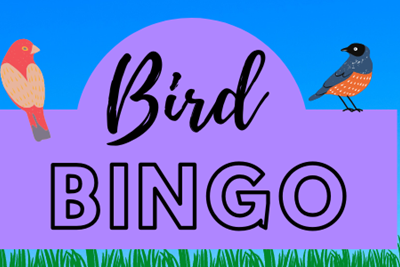 Celebrate 2021 Longwood Gardens Community Read with Bird Bingo